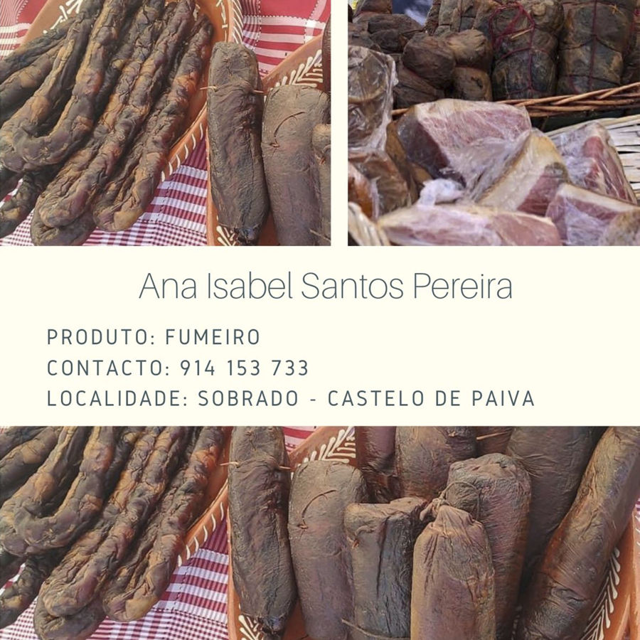 Ana Isabel Santos Pereira
