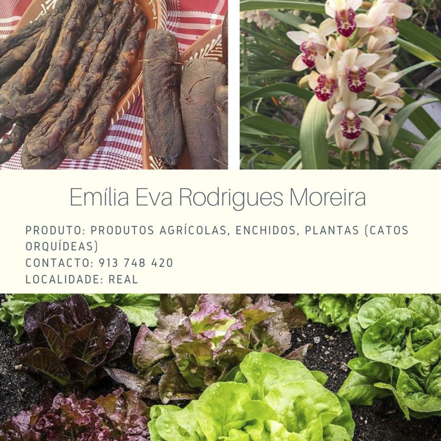 Emília Eva Rodrigues Moreira