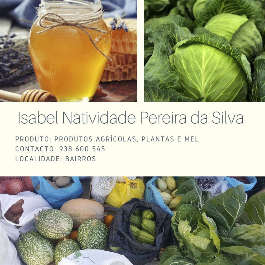 Isabel Natividade Pereira da Silva