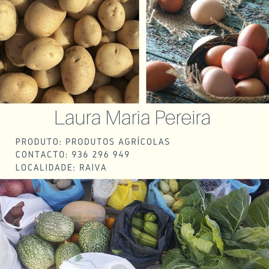 Laura Maria Pereira