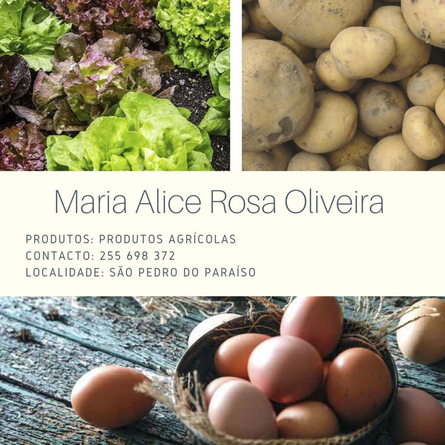 Maria Alice Rosa Oliveira