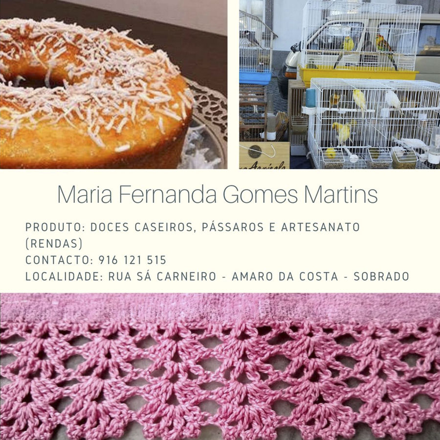Maria Fernanda Gomes Martins