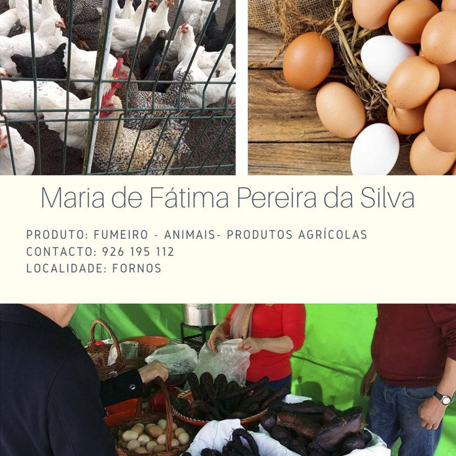 Maria de Fátima Pereira da Silva