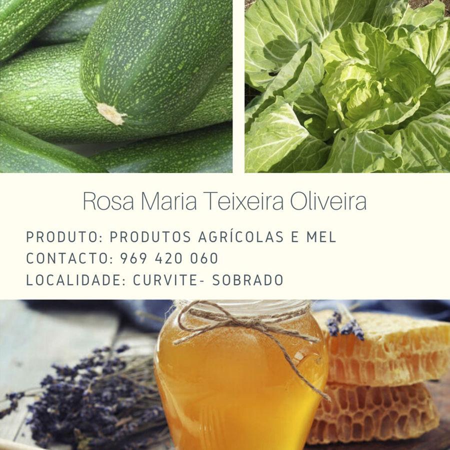 Rosa Maria Teixeira Oliveira