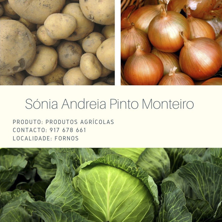 Sónia Andreia Pinto Monteiro