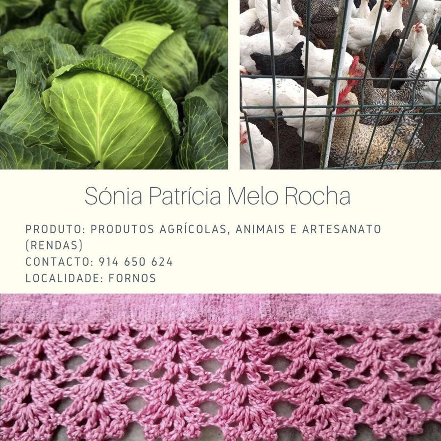 Sónia Patrícia Melo Rocha